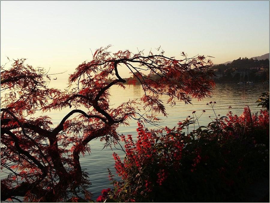 """""""Herbstliche Wärme"""""""