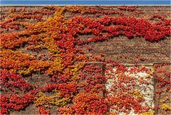 Herbstliche Wand