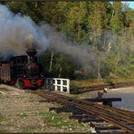 Herbstlicher Dampfbetrieb im Valea Vaserului