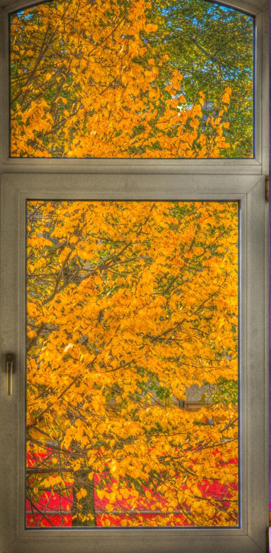 Herbstlicher Fensterblick