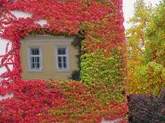 Herbstlicher Fensterrahmen