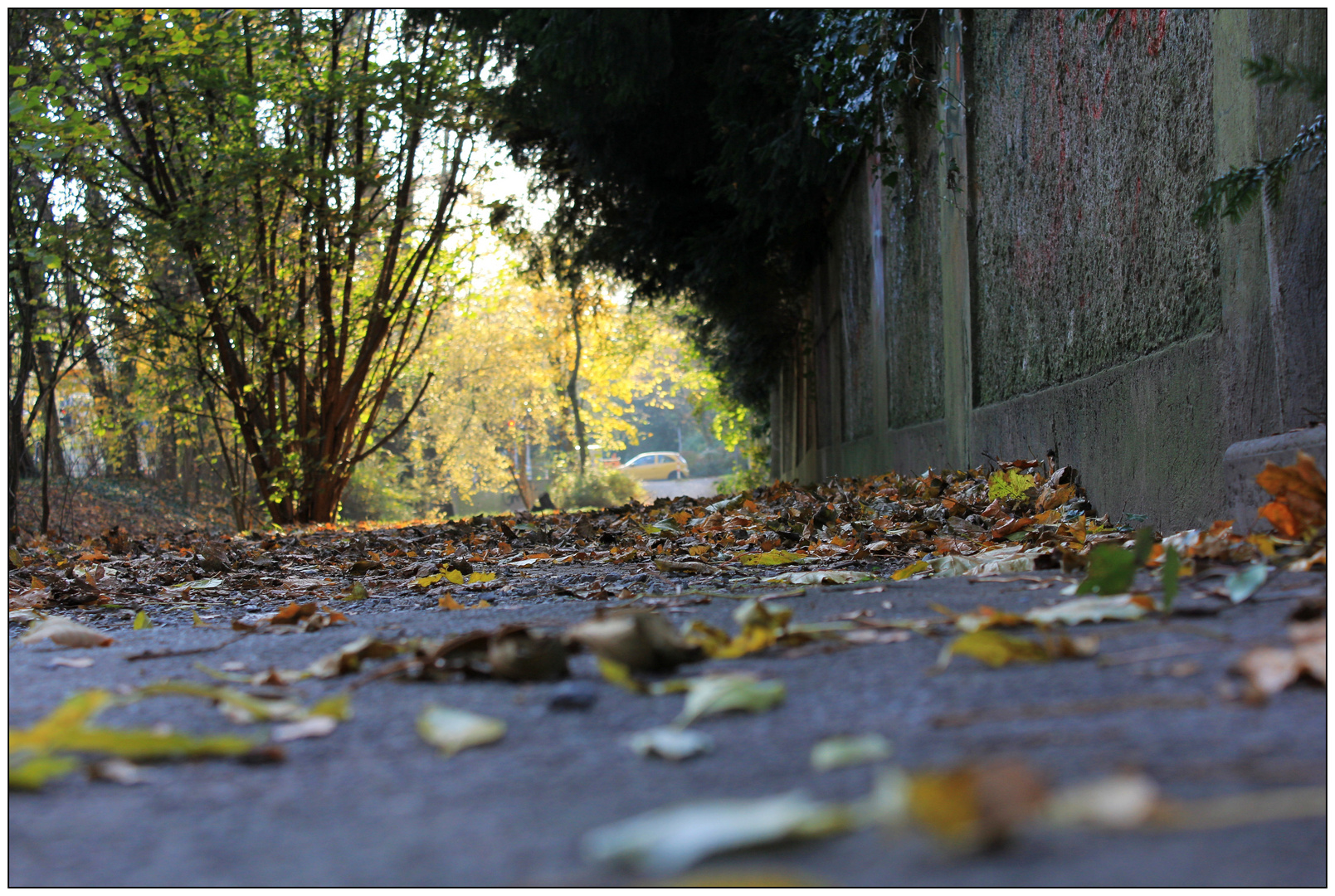 Herbstlicher Fussweg