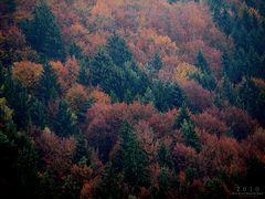 Herbstlicher Hang...