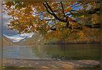 Herbstlicher Königssee