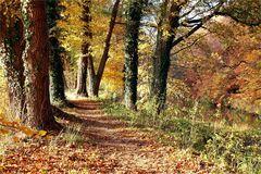 Herbstlicher Malkasten