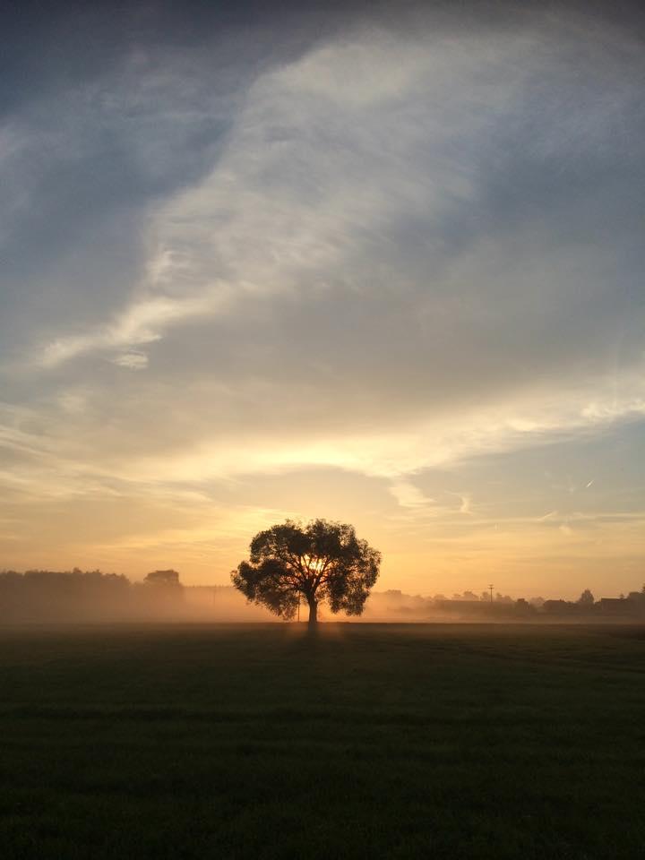 Herbstlicher Morgenspaziergang