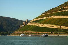 Herbstlicher Rheingau II
