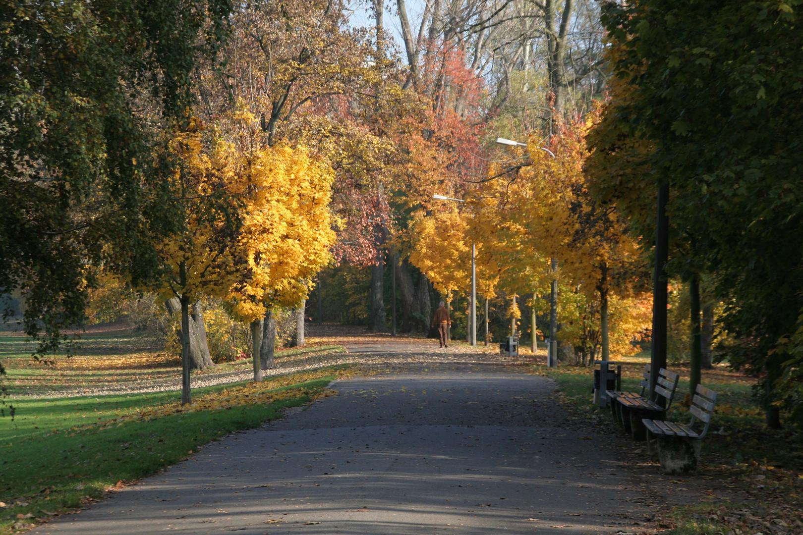 Herbstlicher Spaziergang in Nürnberg