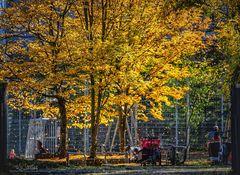 Herbstlicher Spielplatz
