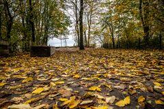 Herbstlicher Weg 1
