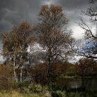 Herbstlicher Wetterumschwung im Fjäll...