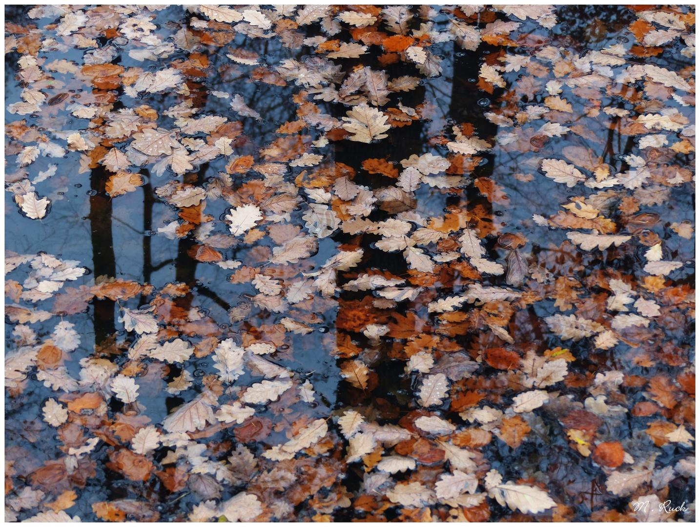 Herbstliches  172