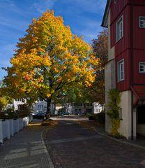 Herbstliches...