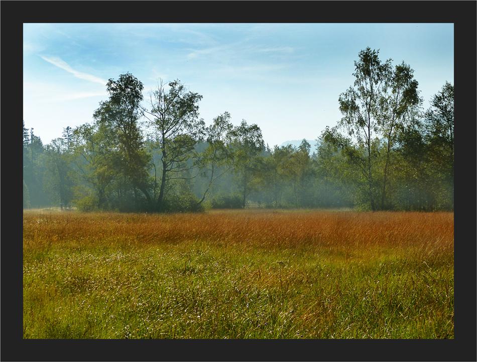 Herbstliches Gemälde