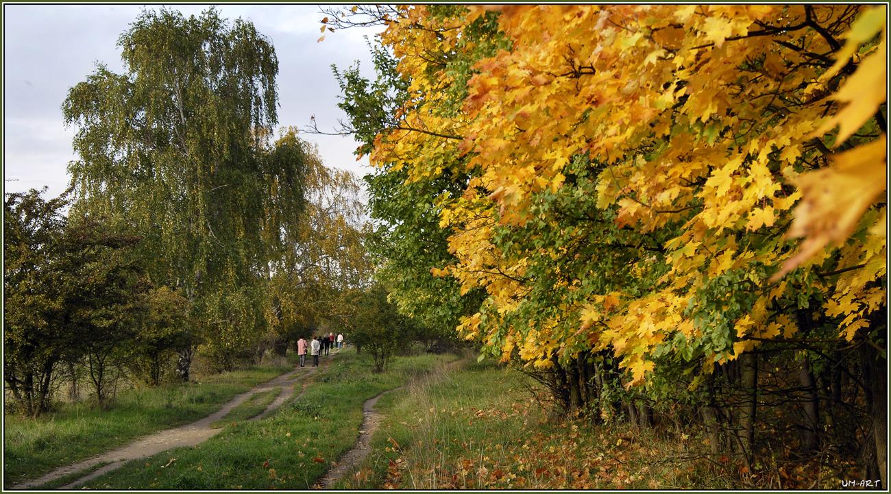 Herbstliches Gold...