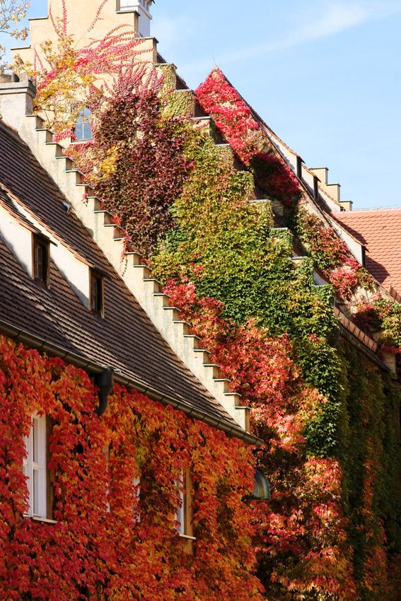 Herbstliches Haus 1
