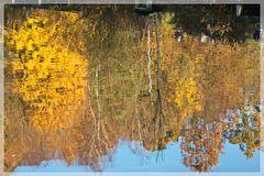 Herbstliches im Wasser