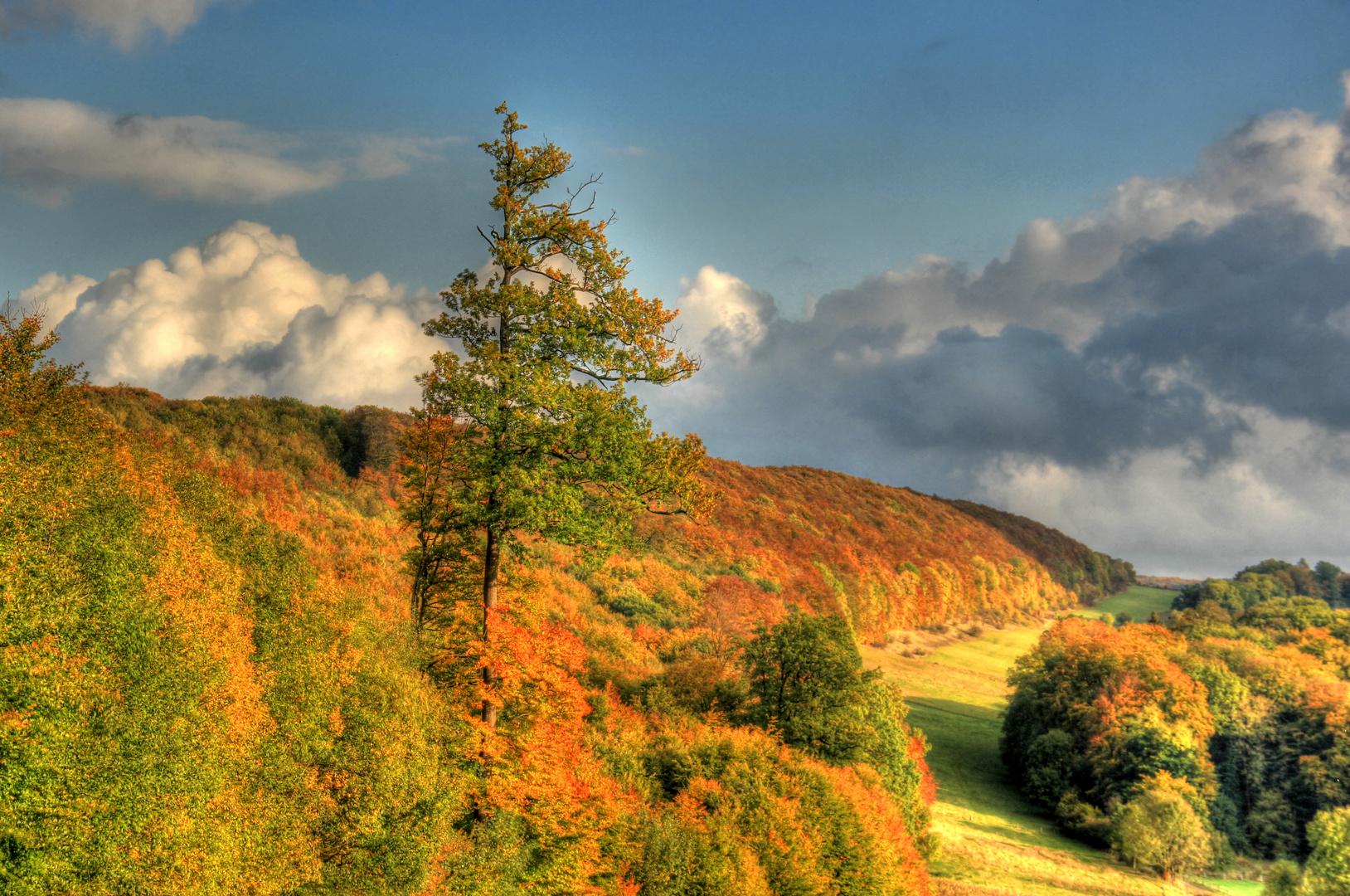 Herbstliches Leinetal