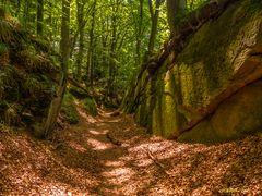 Herbstliches Mullerthal 2 (Luxemburgische Schweiz)