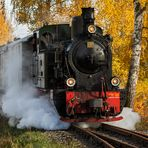 Herbstliches Sauerland