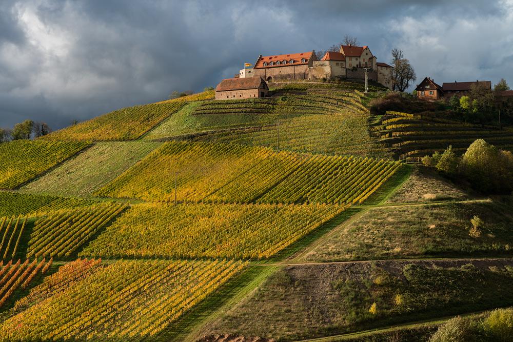 Herbstliches Schloss Staufenberg (Durbach)