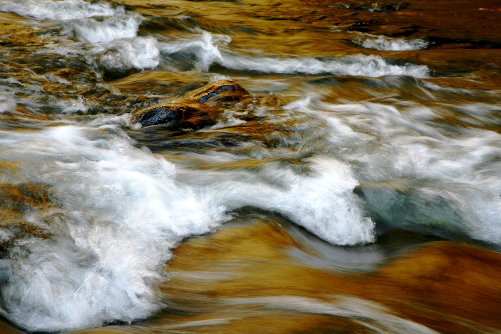 Herbstliches Schwarzwasser