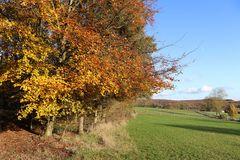 Herbstliches Siegerland