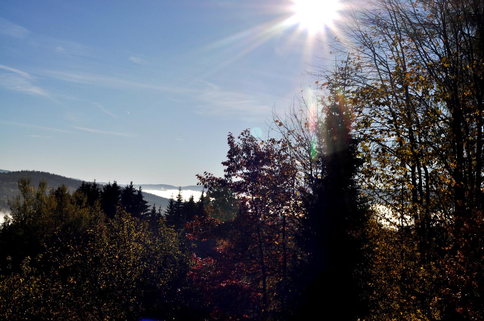 Herbstliches Spiel von Licht, Farben und Nebel...02