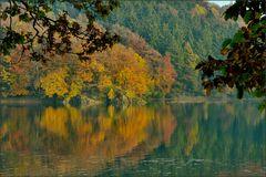 Herbstliches Ufer ...