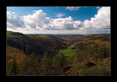 herbstliches Wales