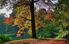 Herbstlicht 1- Entspannung
