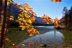 Herbstlicht am Hintersee
