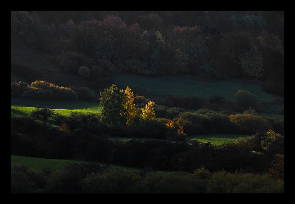 Herbstlicht im Bergschatten...