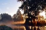 .Herbstlicht im Spreewald.
