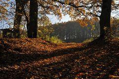 Herbst.Licht und Schatten