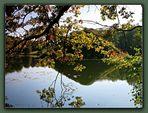 Herbstlich(ter) in Branitz ..