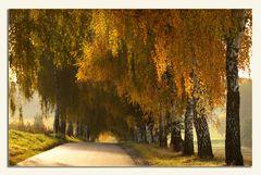 Herbstmaler (3)