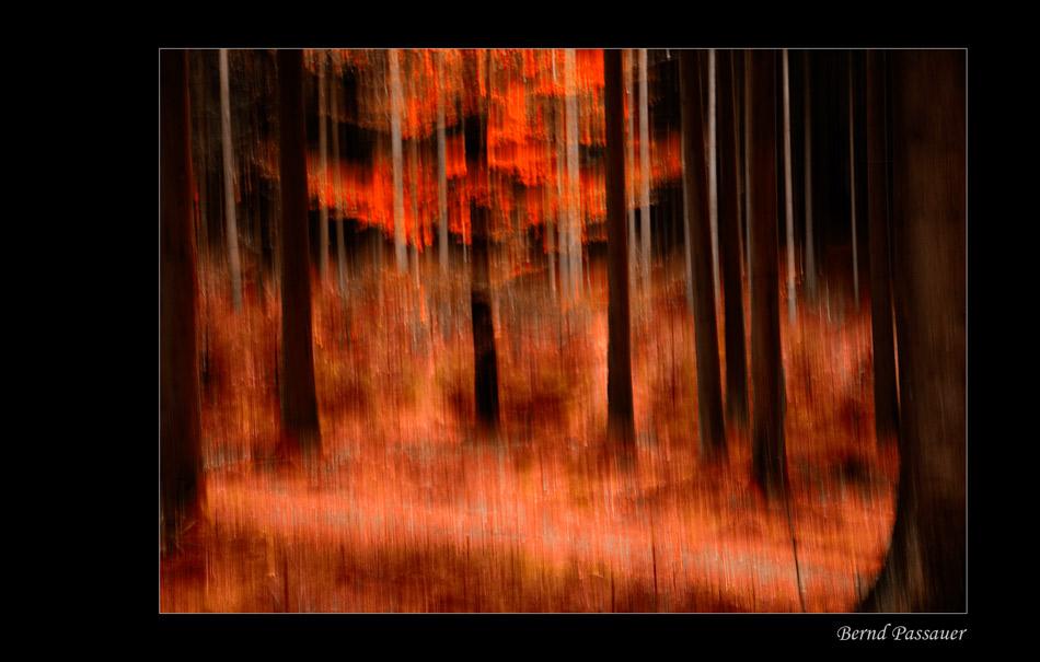 Herbstmalerei_5