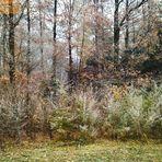 Herbstmalereien