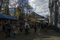 Herbstmesse Basel 2013-02