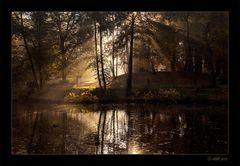 Herbstmorgen - 3