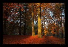 Herbstmorgen - 4