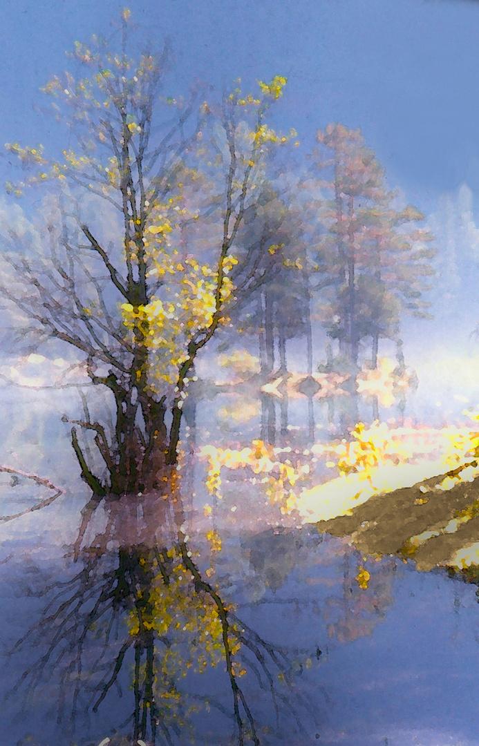 Herbstmorgen am Fernsteinsee