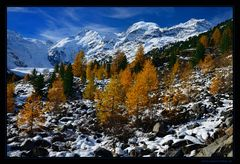 Herbstmorgen am Morteratschgletscher