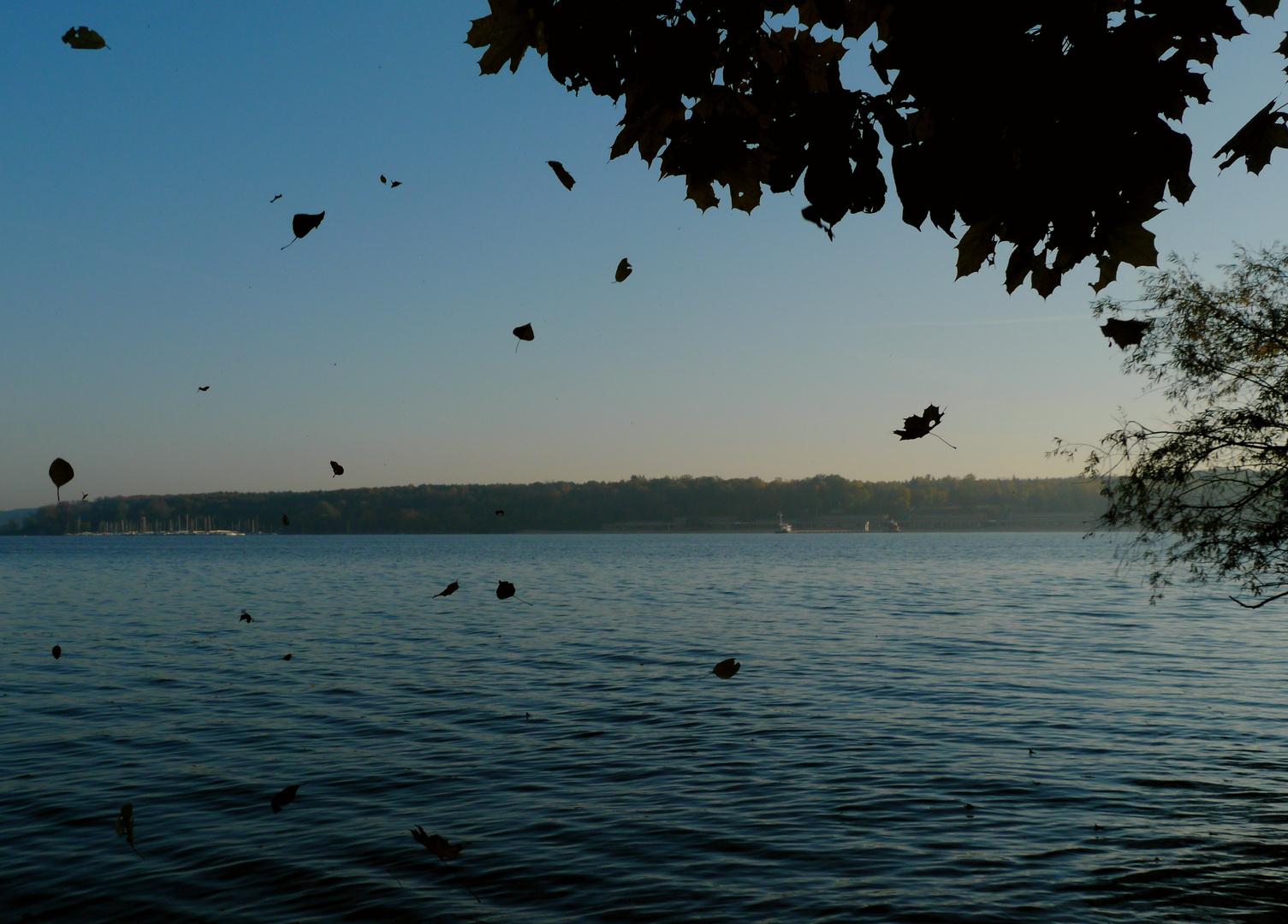 Herbstmorgen am Wannsee