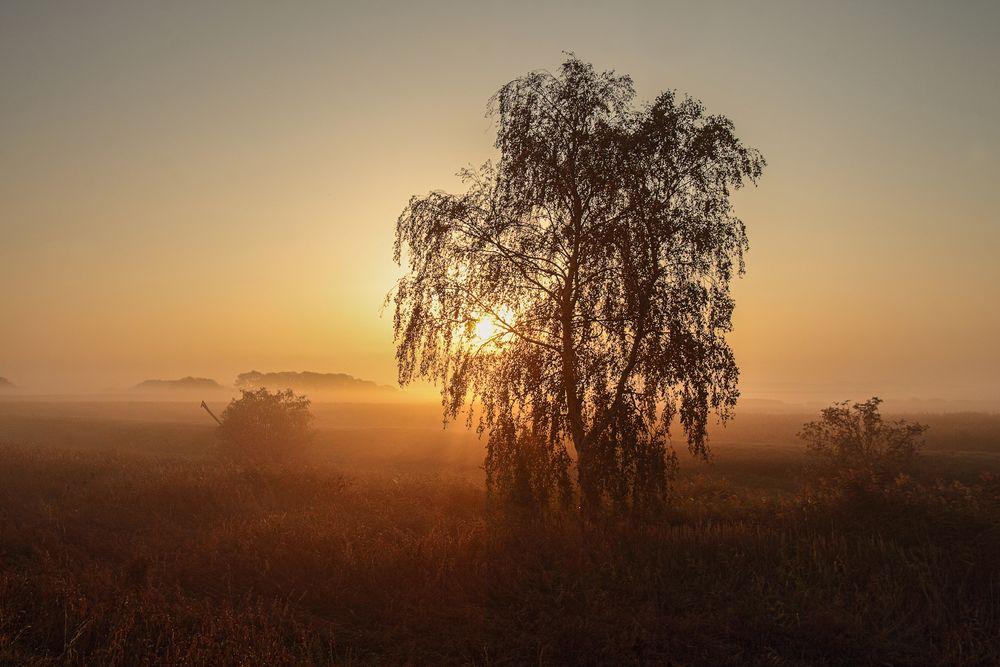 ~ Herbstmorgen auf Ummanz ~