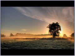 Herbstmorgen bei Bodennebel