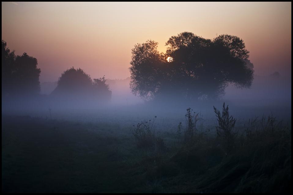 Herbstmorgen II