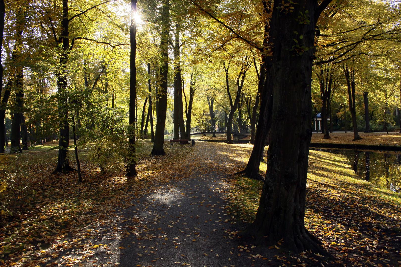 Herbstmorgen im Hofgarten