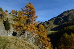 Herbstmorgen im Passeiertal/Timmelsjoch - Nr.8
